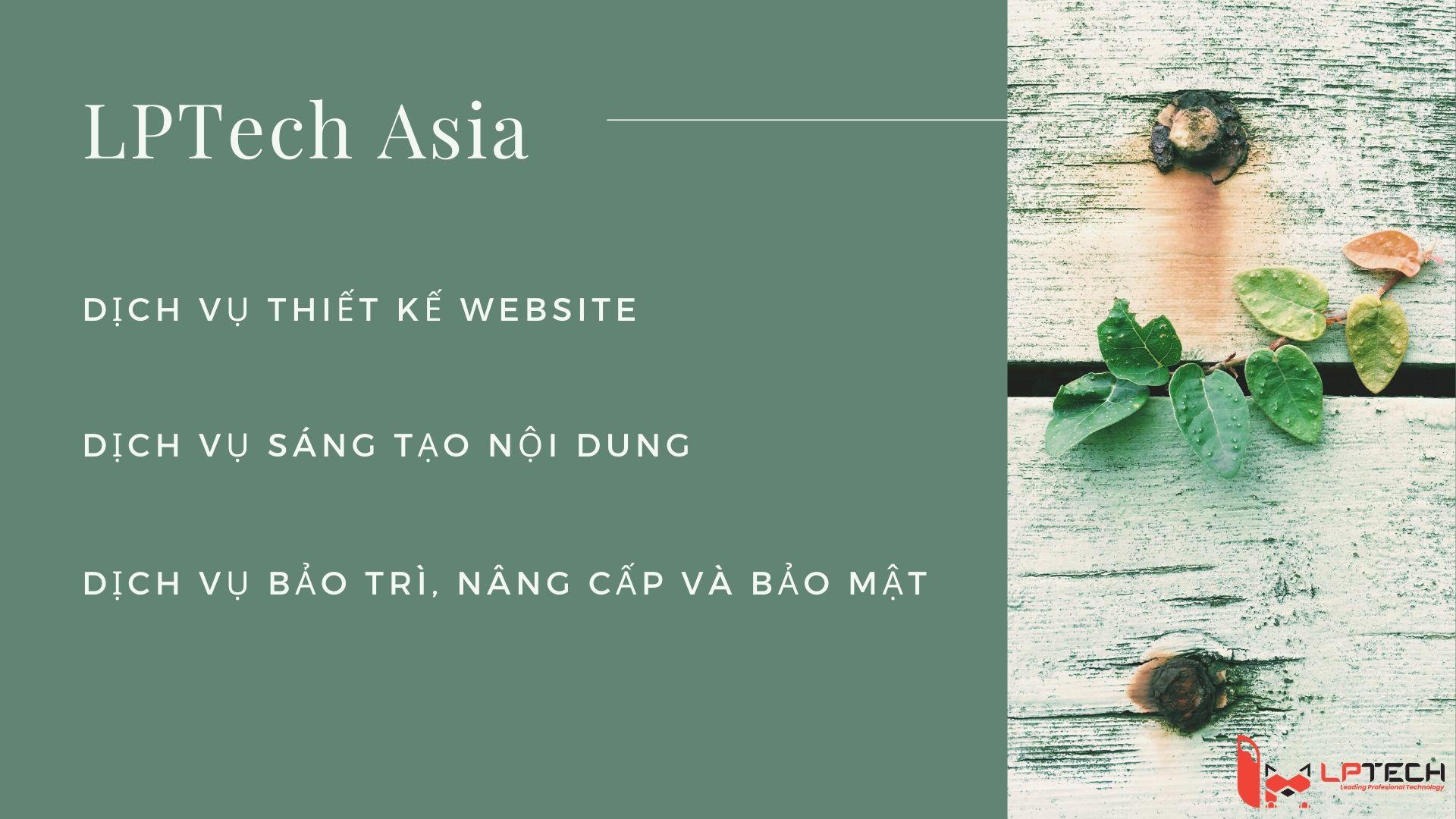 Các dịch vụ cung cấp bởi LPTech Asia