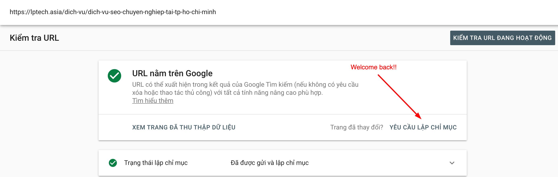 Sau 69 ngày Request Indexing Tool không hoạt động, hiện nó đã được Google mở trở lại.