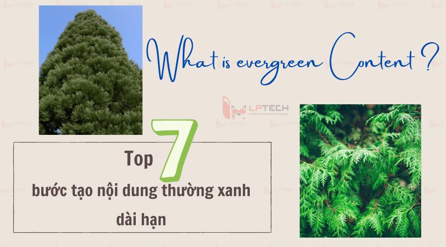 Evergreen content là gì?