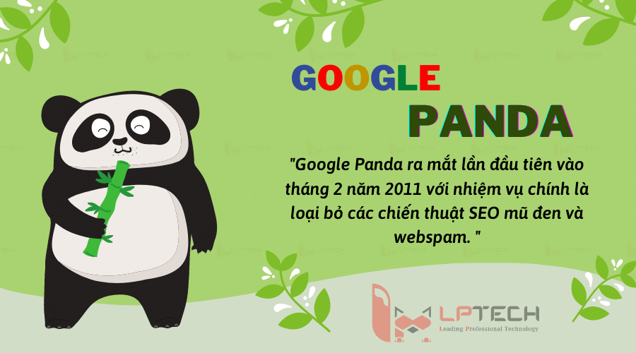 Google Panda: Cập nhật thuật toán hoàn chỉnh từ năm 2011 đến 2021