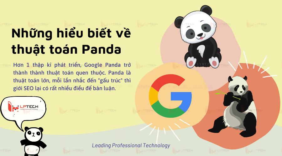 Những hiểu biết về thuật toán Google Panda